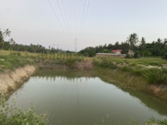 Water pit in the village